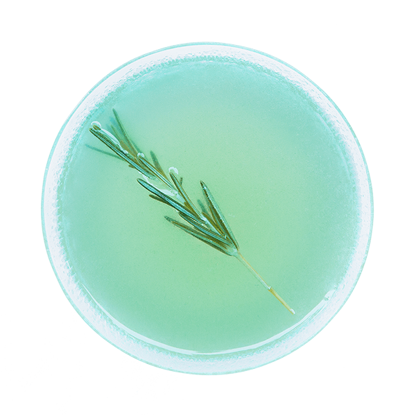 Art_Cocktail_1A